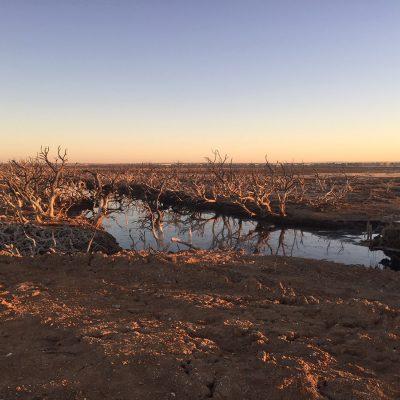 Dry Creek6