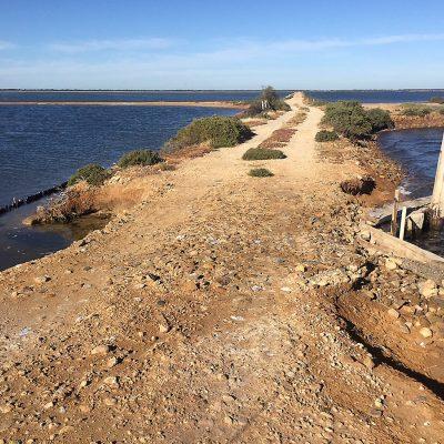 Dry Creek7