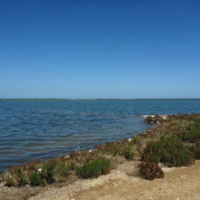Dry Creek8